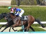 【ブリーダーズGC】藤岡佑介騎手はアッシェンプッテルに騎乗 道営所属馬4頭が回避