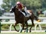 【函館5R新馬戦結果】ソリッドグロウが7馬身差で圧勝