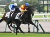 【中京5R新馬戦結果】高額馬ジャスティンパレスが押し切りデビュー勝ち