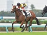 【中山5R新馬戦結果】ドレフォン産駒オルコスが2番手から抜け出す