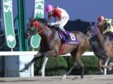 【佐賀・ロータスクラウン賞結果】牝馬トゥルスウィーが押し切り三冠達成!