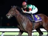 【日本テレビ盃】(船橋) JRA所属の出走予定馬および補欠馬について
