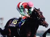 ウメノファイバーが死亡、25歳 1999年オークスを蛯名正義騎手の手綱で制覇