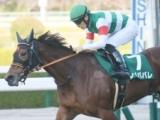【オールカマー】登録馬 グローリーヴェイズ、レイパパレなど16頭