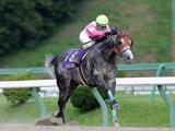 【大井・東京盃】クラスターC覇者のリュウノユキナなど JRA・南関東所属の選定馬が発表