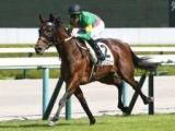 【阪神5R新馬戦結果】M.デムーロ騎手騎乗タガノエスコートが押し切りV