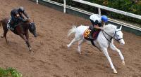 【秋華賞】ソダシ2冠へ完璧 1馬身半先着!秋も白毛馬旋風巻き起こす