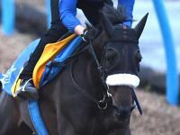 【府中牝馬S】ドナアトラエンテ余裕走 直線勝負で重賞初Vだ 国枝師「いい動き」