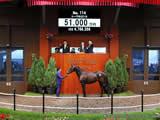 最高額は6億3000万! セレクトセールで取引された歴代高額馬トップ40!