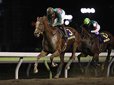 出走全馬のスピード指数が無料! 「大井競馬を攻略せよ!」