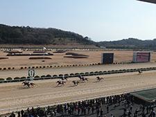佐賀競馬専門紙「競馬日本一」チーフTM・永瀬将尚が導き出した結論は?