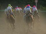 【地方競馬】門別競馬は4月23日まで無観客競馬に