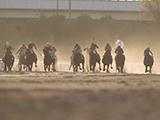 【地方競馬】高知競馬は3月1日から当面の間、無観客競馬を実施