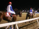 【地方競馬】水沢競馬は11日も開催中止、馬場凍結のため