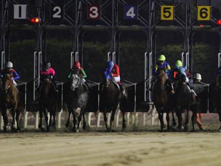 【地方競馬】名古屋競馬場は1月14日から29日まで無観客競馬に