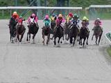 【地方競馬】金沢競馬は24日まで無観客競馬を延長