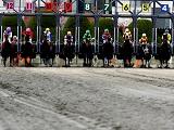 【地方競馬】名古屋の岡部誠騎手が大井競馬で期間限定騎乗