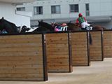 栗東トレセンで新たにコロナ感染 19日感染確認の2人と同じ厩舎のスタッフ
