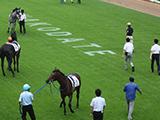 【オークス】事前発表馬体重 レーヌミノルは478キロ