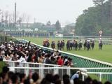 高野師はショウナンパンドラの有馬記念登録を13日に決定する方針