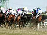 【阪神4R新馬戦結果】13番人気のクインズバジルが快勝