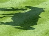 【海外競馬】仏G1馬ウェイトゥパリスはジャパンCがラストラン、来年から種牡馬に