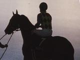 【海外競馬】英仏マイルG1馬サーカスマキシマスが引退、種牡馬入り
