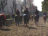 【東京スポーツ杯2歳S】新馬戦衝撃Vのダノンザキッドはコントレイルになれるか/POGマル秘週報