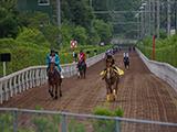 【次走報・関西馬】ギベオンは毎日王冠、プールヴィルは信越Sへ
