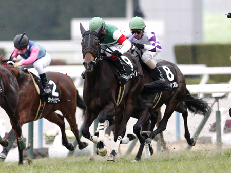無傷の3連勝で桜花賞に名乗りを上げたいシンハライト(写真は2016年紅梅S優勝時)