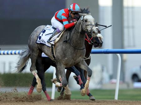武豊騎手騎乗のラニが優勝。日本調教馬初のUAEダービー制覇を果たした(撮影:高橋 正和)