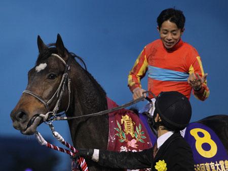 引退し、京都競馬場で誘導馬となるローマンレジェンド(写真は2012年東京大賞典優勝時、撮影:高橋正和)