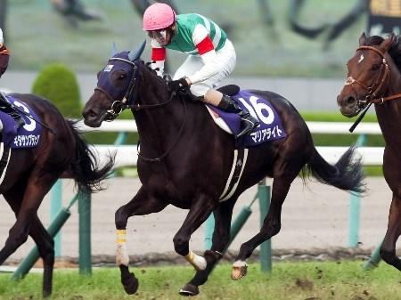 マリアライトが牡馬を撃破し11年ぶり3頭目の牝馬V