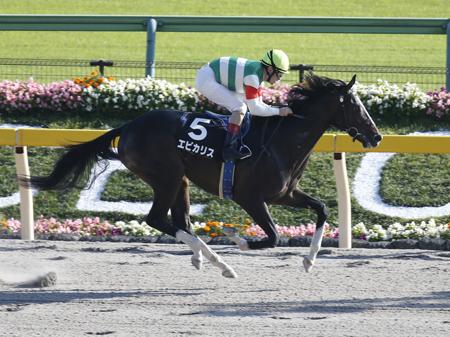 7馬身差の圧勝でプラタナス賞を制したエピカリス(撮影:下野雄規)