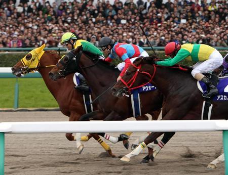 アウォーディー(中)をクビ差でかわしたサウンドトゥルー(左)。手前は3着のアスカノロマン