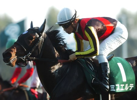 朝日杯FSには2連勝中のフランケル産駒の牝馬・ミスエルテらが登録