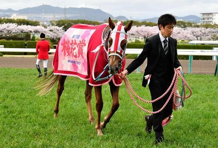 桜花賞を制し桜の女王に輝いたレーヌミノル