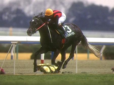 重賞4勝を挙げた芦毛の快速娘エイシンバーリン(写真は1995年アーリントンC優勝時、撮影:高橋正和)