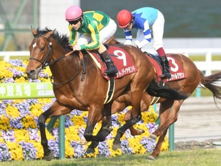 昨年の有馬記念馬サトノダイヤモンドは8枠15番からのスタート(写真は2017年阪神大賞典優勝時)