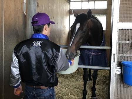栗東トレセンの自厩舎で静養するキタサンブラック(撮影:花岡貴子)
