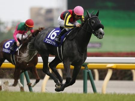 2番人気の牝馬アエロリットが混戦を制す(撮影:下野雄規)
