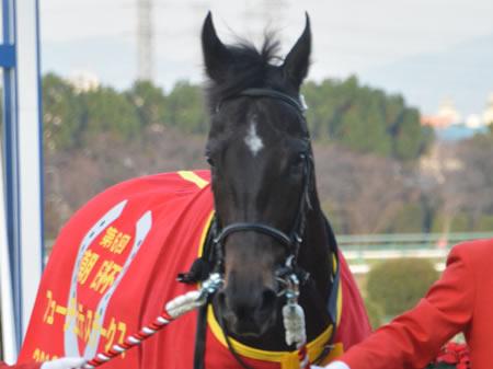 16年朝日杯FSの勝ち馬サトノアレスがダービー断念 (c)netkeiba
