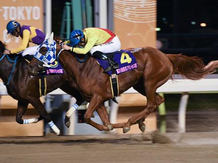 笹川翼騎手騎乗のアンジュジョリーがゴール寸前でアップトゥユーを捕らえ嬉しいSI初制覇達成