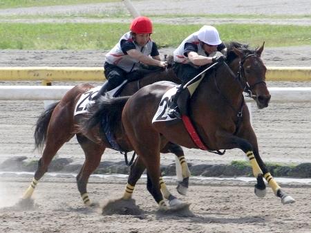 07年のヴィクトリアマイル勝ち馬を母に持つ「コイウタの15」が最高価格(写真右)