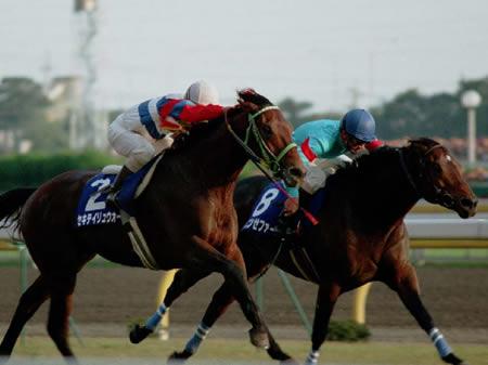 1992年から93年にかけて、GI3勝を挙げたヤマニンゼファー(写真右、撮影:下野雄規、(C)netkeiba)
