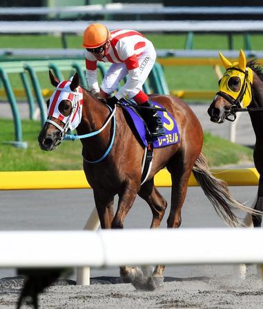 桜花賞馬のレーヌミノルは13着に終わる
