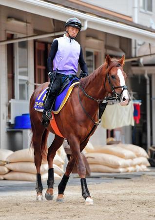 引き締まった馬体で決戦に臨むスワーヴリチャード