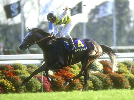 98年菊花賞をレコードで逃げ切った二冠馬セイウンスカイが死亡
