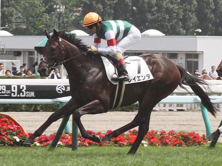 札幌で新馬戦を快勝したレイエンダの骨折が判明