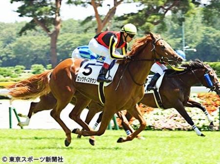 新馬戦を勝利したロックディスタウン(写真提供:東京スポーツ)